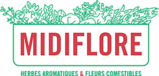 Midiflore